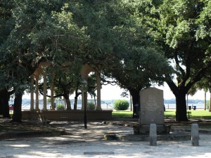The Battery Park. Black Beard was hung from one of these trees.