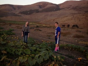 My daughter Holly and our friend Connor picking pumpkins on this beautiful farm.