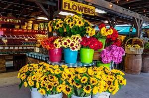 Flowers in the market at Avila Barn, Avila Beach.