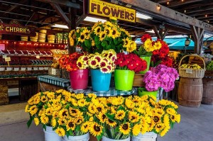 Flowers in the market at Avila Barn, Avila Beach.