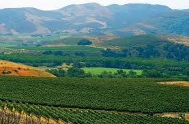 Farmland in Santa Barbara County