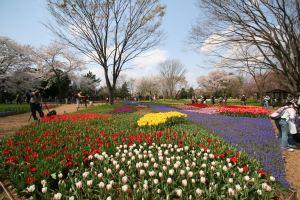 Easter in Japan